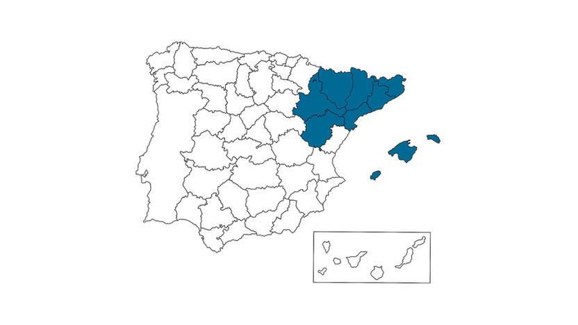 contact person, sales, profile and map, Joan Romeu, ES