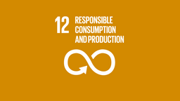 logo, united nations, sustainable development goals, unsdg-12, responsible consumption and production