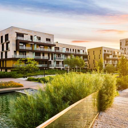 City, Building, Urban, Greenery, Plants