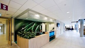 Cleaning & hygienic ceilings with Rockfon MediCare Standard ceiling tiles (Healthcare)